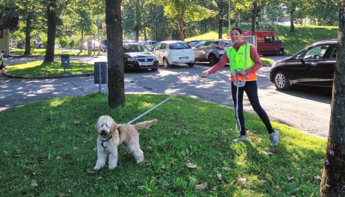 Mantrailing – Hundesport mal Neu